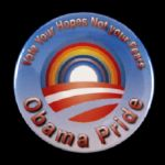 "2012 Vote Your Hopes Not Your Fears Barack Obama 2 1/8"" Campaign Pinback Button"