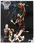 "2000s Dennis Rodman Chicago Bulls Signed 16"" x 20"" Photo (*JSA*)"